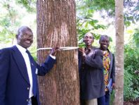 /edit/images/kenya_tree_growers_tn.jpg